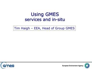 Using GMES services and in-situ