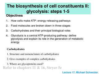The biosynthesis of cell constituents II: glycolysis: steps 1-5