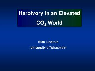 Herbivory in an Elevated  CO 2  World