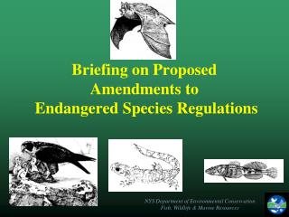 Briefing on Proposed Amendments to    Endangered Species Regulations
