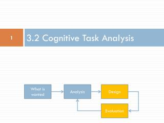 3.2 Cognitive Task Analysis