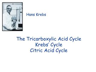 The Tricarboxylic Acid Cycle Krebs' Cycle Citric Acid Cycle