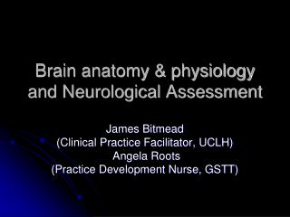Brain anatomy & physiology and Neurological Assessment