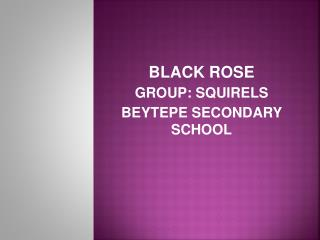 BLACK ROSE GROUP: SQUIRELS BEYTEPE SECONDARY SCHOOL