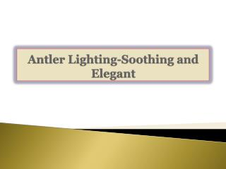 Antler Lighting-Soothing and Elegant