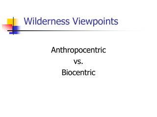 Wilderness Viewpoints