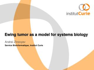 Ewing tumor as a model for systems biology