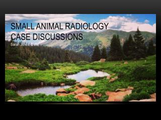 SMALL ANIMAL RADIOLOGY  CASE DISCUSSIONS Sarah Jones, DVM
