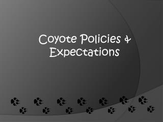 Coyote Policies & Expectations