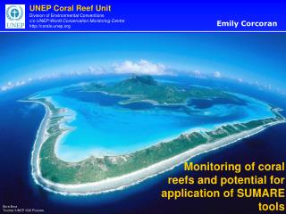 Monitoring of coral reefs and potential for application of SUMARE tools