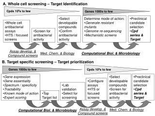 B. Target specific screening – Target prioritization