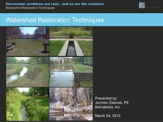 Watershed Restoration Techniques