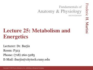 Lecture 25: Metabolism and Energetics