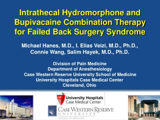 Intrathecal Hydromorphone and Bupivacaine Combination Therapy for Failed Back Surgery Syndrome