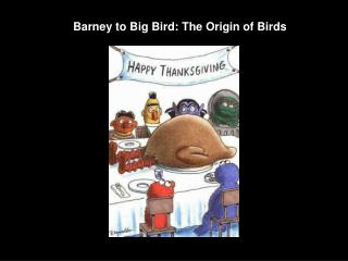 Barney to Big Bird: The Origin of Birds