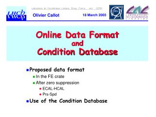 Online Data Format  and Condition Database