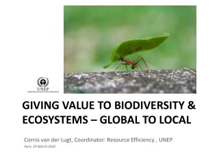 Giving value to biodiversity & ecosystems – global to local