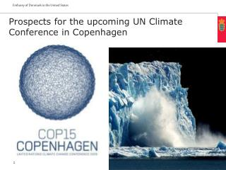 Prospects for the upcoming UN Climate Conference in Copenhagen