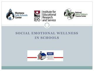 Social Emotional Wellness In Schools