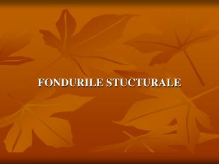 FONDURILE STUCTURALE