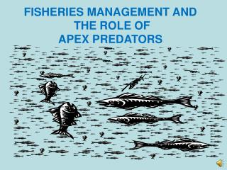 FISHERIES MANAGEMENT AND  THE ROLE OF APEX PREDATORS