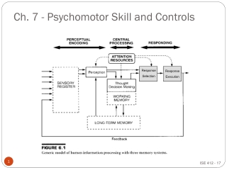 Ch. 7 - Psychomotor Skill and Controls