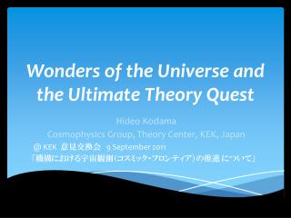 Wonders of the Universe and  the Ultimate Theory Quest
