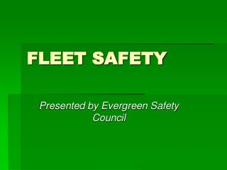 FLEET SAFETY