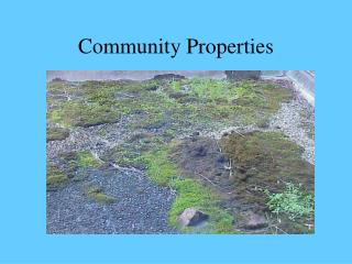 Community Properties
