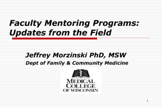 Faculty Mentoring Programs: Updates from the Field