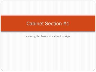 Cabinet Section #1