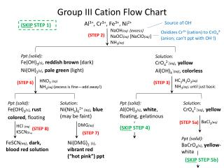 Group III  Cation  Flow Chart