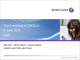 Third meeting ECOSCELLS 9 June 2010 Lyon