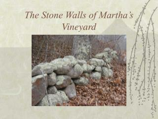 The Stone Walls of Martha's Vineyard