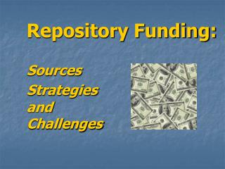 Repository Funding: Sources Strategies and  Challenges