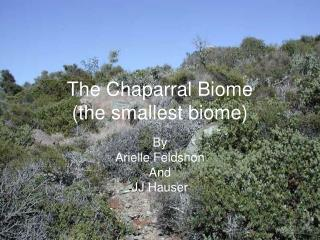 The Chaparral Biome (the smallest biome)