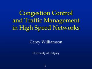 Congestion Control and Traffic Management  in High Speed Networks