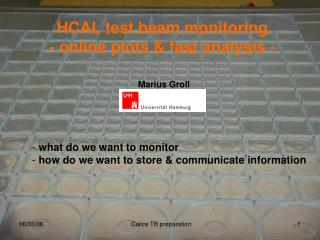 HCAL test beam monitoring - online plots & fast analysis -