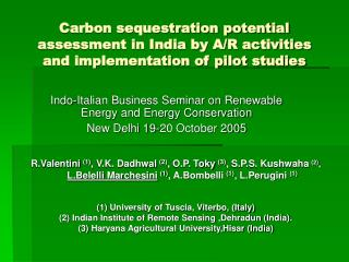 Indo-Italian Business Seminar on Renewable Energy and Energy Conservation