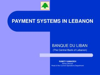 PAYMENT SYSTEMS IN LEBANON