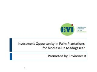 Investment Opportunity in Palm Plantations for biodiesel in Madagascar