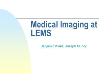 Medical Imaging at LEMS