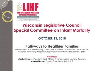 Wisconsin Legislative Council Special Committee on Infant Mortality OCTOBER 13, 2010