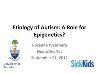 Etiology of Autism: A Role for Epigenetics?