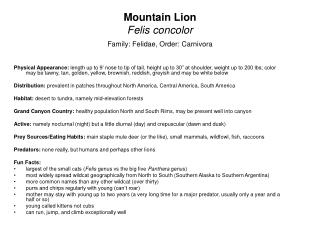 Mountain Lion Felis concolor Family: Felidae, Order: Carnivora