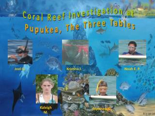 Coral Reef Investigation at  Pupukea, The Three Tables