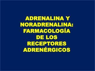 ADRENALINA Y NORADRENALINA: FARMACOLOGÍA DE LOS RECEPTORES ADRENÉRGICOS