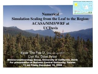 Numerical  Simulation Scaling from the Leaf to the Region: ACASA/MM5/WRF at  UCDavis