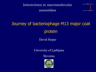 Journey of bacteriophage M13 major coat protein