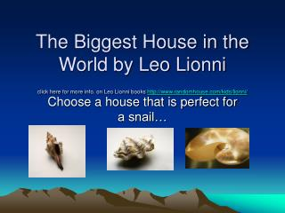 Choose a house that is perfect for a snail…